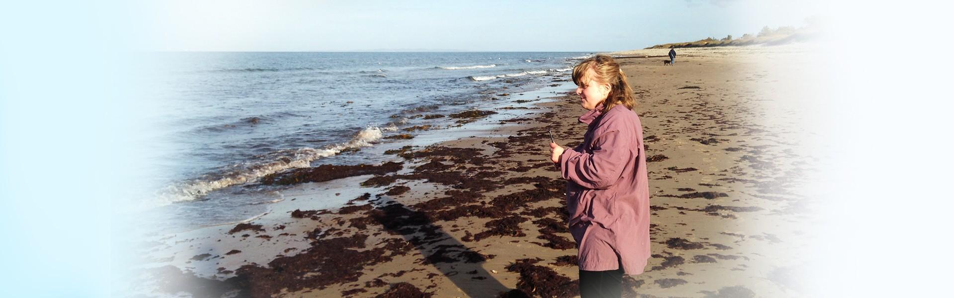 Dagtilbuddet Damsgaarden, strand baggrund